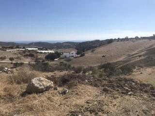 Land in Pareklisia